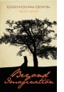 Beyond Imagination by Goldlyn Ugonna winner of the ANA/NDDC Flora Nwapa Prize for Womens Writing